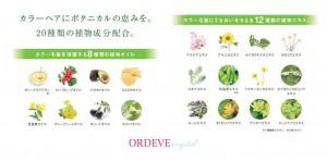 ordeve_crystal-3[1]